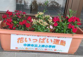花いっぱい運動